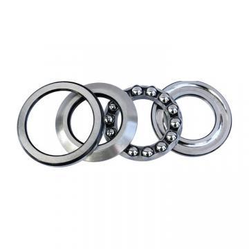 NACHI 6026ZZ C3  Single Row Ball Bearings