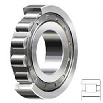 1.25 Inch | 31.75 Millimeter x 2.75 Inch | 69.85 Millimeter x 0.688 Inch | 17.475 Millimeter  1.25 Inch | 31.75 Millimeter x 2.75 Inch | 69.85 Millimeter x 0.688 Inch | 17.475 Millimeter  RHP BEARING LRJA1.1/4J  Cylindrical Roller Bearings