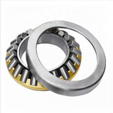 INA RTW602  Thrust Roller Bearing